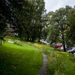 Copyright 2012 Liv Vikingson